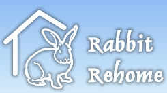 rabbitrehome